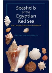 Obálka knihy  Seashells of the Egyptian Red Sea od Rusmore-Villaume Mary Lyn, ISBN:  9789774160967