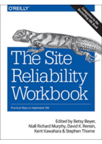 Obálka knihy  Site Reliability Workbook od Beyer Betsy, ISBN:  9781492029502