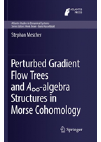 Obálka knihy  Perturbed Gradient Flow Trees and A -algebra Structures in Morse Cohomology od Mescher Stephan, ISBN:  9783030095260