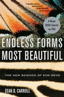 Endless Forms Most Beautiful: The New Science of Evo Devo (Carroll Sean B.)(Paperback)