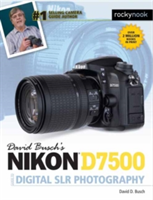 David Busch's Nikon D7500 Guide to Digital SLR Photography (Busch David D.)(Paperback)