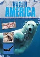 North America (Jones Grace)(Pevná vazba)