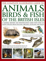Complete Illustrated Guide to Animals, Birds & Fish of the British Isles - A Natural History and Identification Guide with Over 440 Native Species from England, Ireland, Scotland and Wales (Gilpin Daniel)(Paperback)