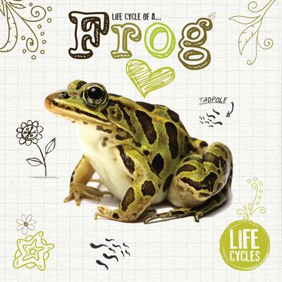 Life Cycle of a Frog (Jones Grace)(Pevná vazba)