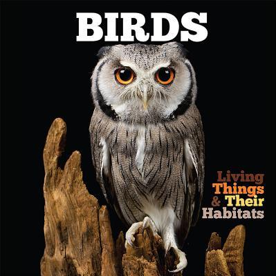 Birds (Jones Grace)(Paperback / softback)