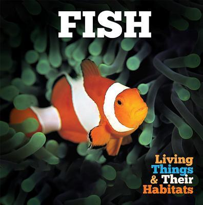 Fish (Jones Grace)(Paperback / softback)